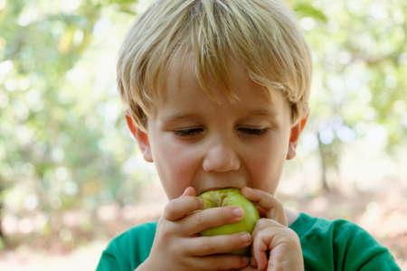 detoxing: Portrait of boy eating green apple on fruit farm