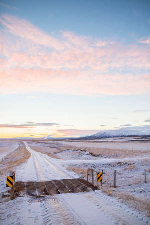 cattle grid: Cattle grid on snow-covered country road, Iceland