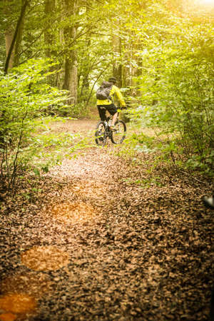 Rear view of mature male mountain biker cycling on forest trail LANG_EVOIMAGES