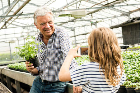 Granddaughter using smartphone to take photograph of grandfather holding potted herb plant in hothouse