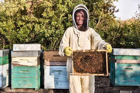 Portrait of woman in beekeeper dress holding a hive frame full of bees