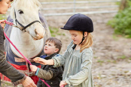 Boy and sister trying to take pony lead from instructor