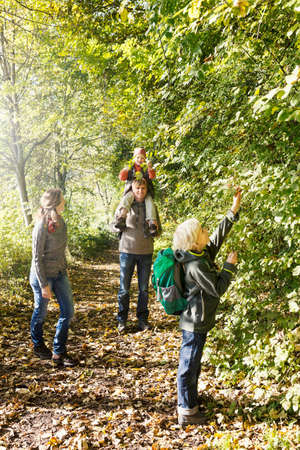 Family walking on tree lined path enjoying the trees LANG_EVOIMAGES
