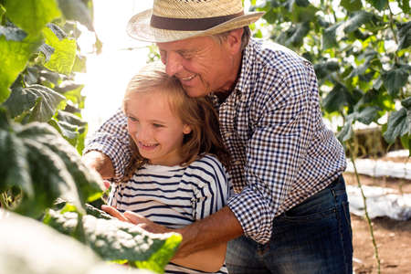 Grandfather standing behind granddaughter tending to plants LANG_EVOIMAGES