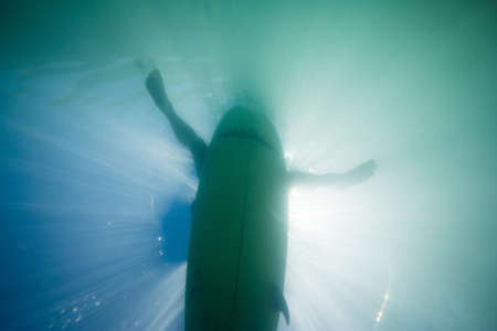 liberating: Underwater low angle view of surfers legs hanging over surfboard, backlit LANG_EVOIMAGES