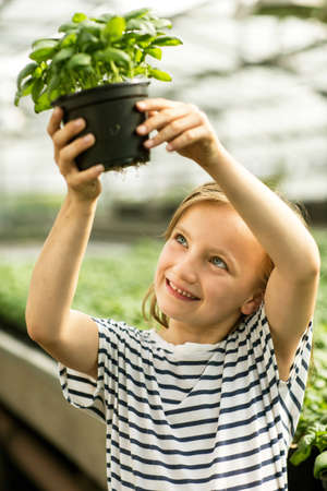 Girl holding up potted basil plant looking at roots smiling LANG_EVOIMAGES