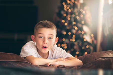 Portrait of excited boy on sofa in front of christmas tree