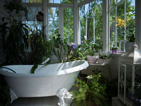 Bathtub in bathroom filled with plants, still life LANG_EVOIMAGES