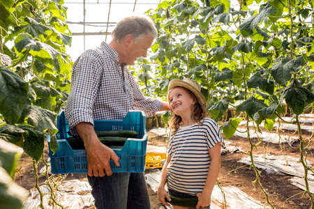 grampa: Grandfather and granddaughter in hothouse holding cucumbers trying on hat