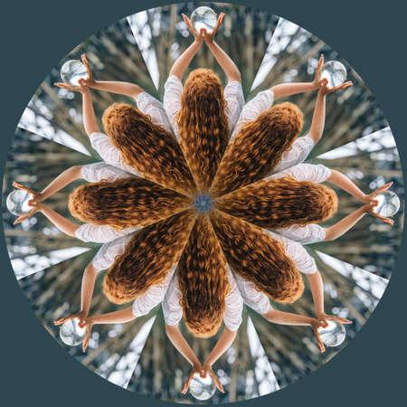 Human kaleidoscope LANG_EVOIMAGES
