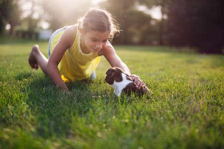 admired: Girl kneeling on grass stroking Boston Terrier puppy