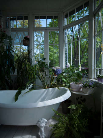 Bathtub in bathroom filled with plants, still life LANG_EVOIMAGES