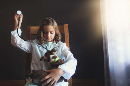 Girl sitting on chair dressed up as doctor tending to Boston terrier puppy using stethoscope