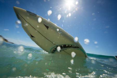 Low angle view of shark surfboard splashing on ocean, Los Angeles, USA