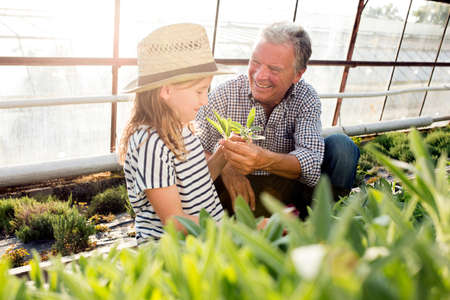 Grandfather and granddaughter in hothouse smelling plants smiling