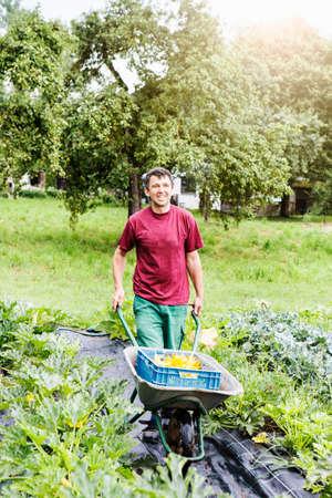 produits alimentaires: Agriculteur poussant la brouette dans une ferme biologique