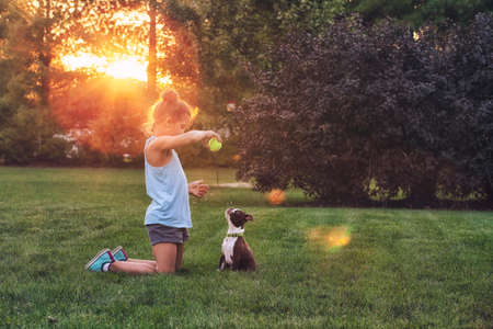 pooches: Side view of girl kneeling on grass using tennis ball to teach Boston terrier puppy