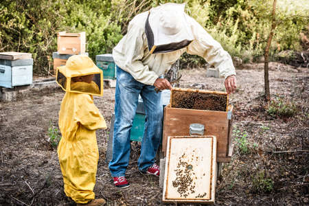 relaciones laborales: Beekeeper holding honeycomb while his son watches on LANG_EVOIMAGES