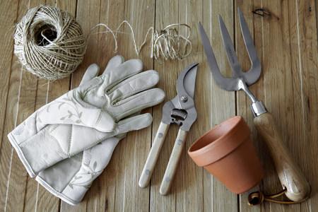 pitchfork: Gardening tools,still life