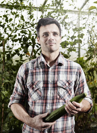 Man holding cucumber in hot house