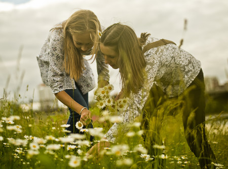 Two young women picking bunch of daisies