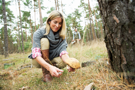 resourceful: Mid adult woman foraging for mushrooms