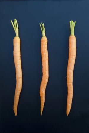Three carrots,still life
