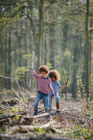 Brother and sister exploring together in woods