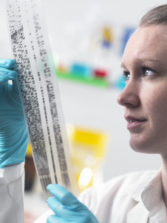 Scientist holding DNA autoradiogram in laboratory LANG_EVOIMAGES