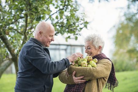 65 69 years: Portrait of happy senior couple with apples