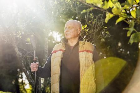 65 69 years: Senior man holding rake