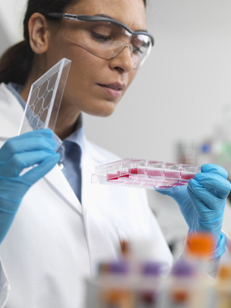 specimen testing: Stem cell research. Female scientist examining cell cultures in multiwell tray LANG_EVOIMAGES