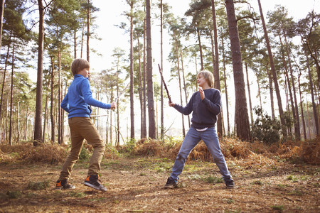 Twin brothers play fighting with sticks in forest LANG_EVOIMAGES