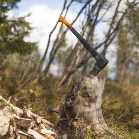 resourceful: Axe stuck in tree stump