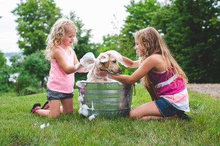 paciencia: Dos hermanas de baño de mascotas Labrador Retriever cachorro