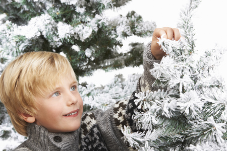 snowed: Boy decorating the christmas tree