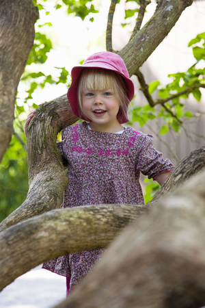 adventuresome: Girl climbing tree in forest