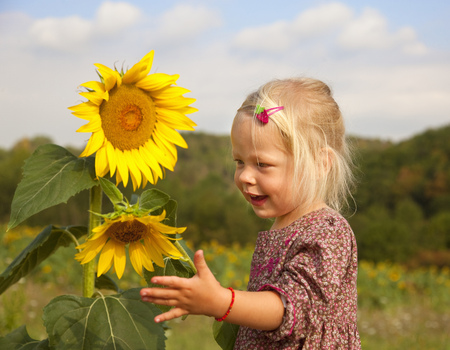 gratified: Girl playing with sunflowers in field