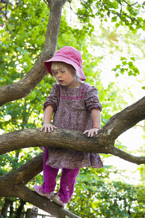 Girl climbing tree in forest