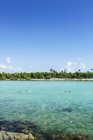 roo: Akumal, Quintana Roo, Mexico