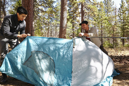 Two young men putting up tent in forest, Los Angeles, California, USA LANG_EVOIMAGES