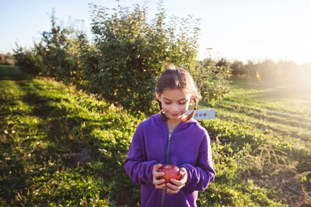 7 8: Girl in orchard holding apple looking down smiling
