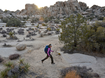 joshua: Hiker exploring Mojave Desert, Joshua Tree National Park, California