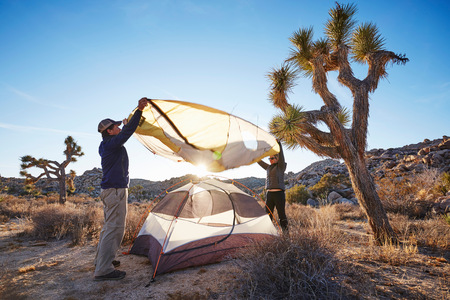 joshua: Campers assembling tent, Joshua Tree National Park, California