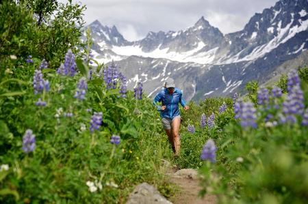 gold capped: Woman running the Gold Mint Trail amongst mountain lupins, Talkeetna Mountains near Hatcher Pass, Alaska, USA LANG_EVOIMAGES