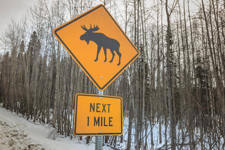 moose crossing sign near fairbanks alaska usa stock photo picture