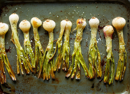 vegetable tin: Overhead view of roasted whole spring onions in roasting tin