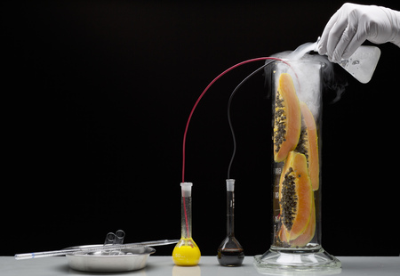 additional chemicals: Scientist experimenting on fruit LANG_EVOIMAGES