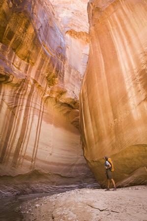 paria canyon: Male hiker in Paria Canyon, Vermilion Cliffs Wilderness, Utah, USA LANG_EVOIMAGES