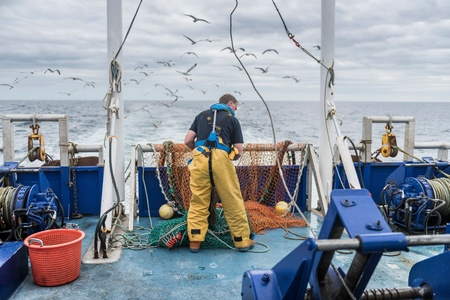 trawl: Fisherman inspecting trawl net on research ship LANG_EVOIMAGES